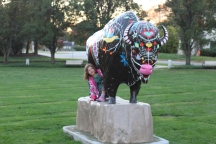 Tuhey Park Buffalo Statue - 2016